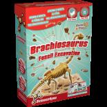 Excavaciones Fósiles Brachiosaurus